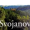 Publikace Svojanov a okolí